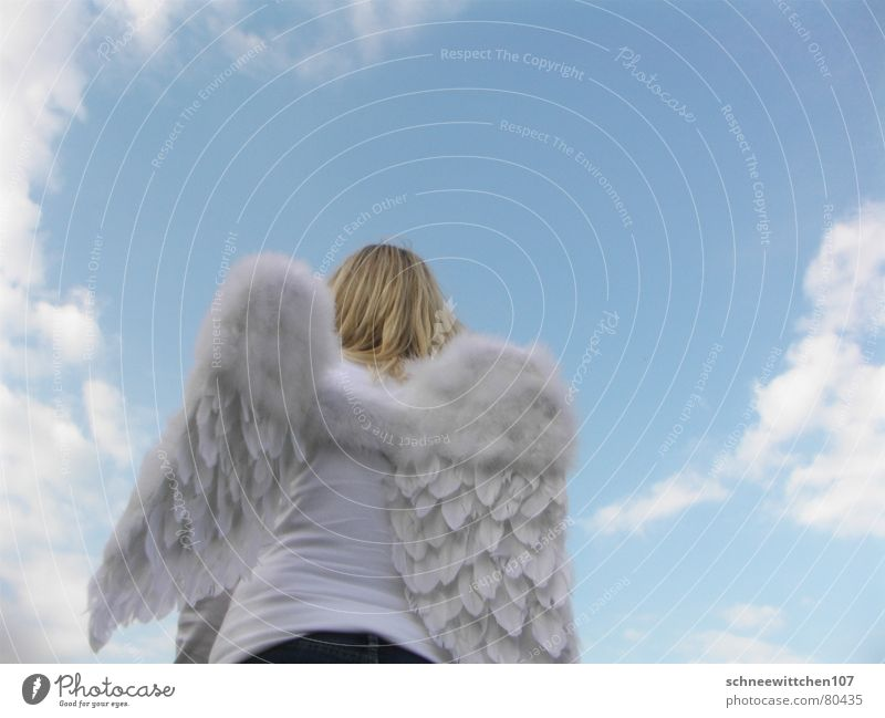 Human being Sky Blue Clouds Angel Peace Wing Protection Paradise Span