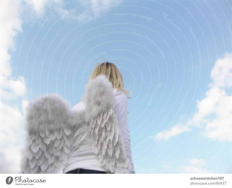Human being Sky Blue Clouds Flying Wing Angel Protection Peace Paradise Responsibility Guard Span