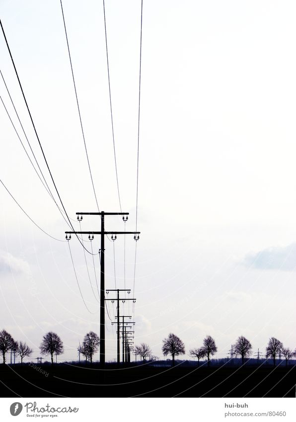 Black Environmental Power Way Silhouette Electricity Tree Gloomy Horizon Painting and drawing (object) Iron Provision Symmetry Transmission lines Shadow Sky