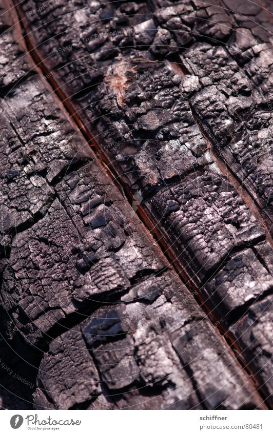 Black Warmth Wood Energy industry Blaze Crazy Diagonal Burn Macro (Extreme close-up) Fireplace Ashes Firewood Bend Across Trademark