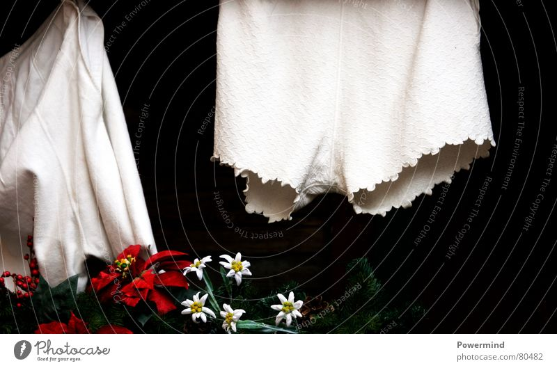 White Nostalgia Pallid Washing Laundry Underwear Dry Underpants Hang up Costume Clothesline Panties Cotton Washing day