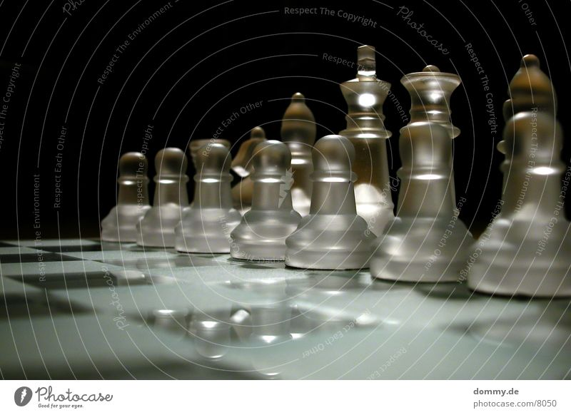 Glass Tower Horse Lady King Runner Chess Chessboard Macro (Extreme close-up)