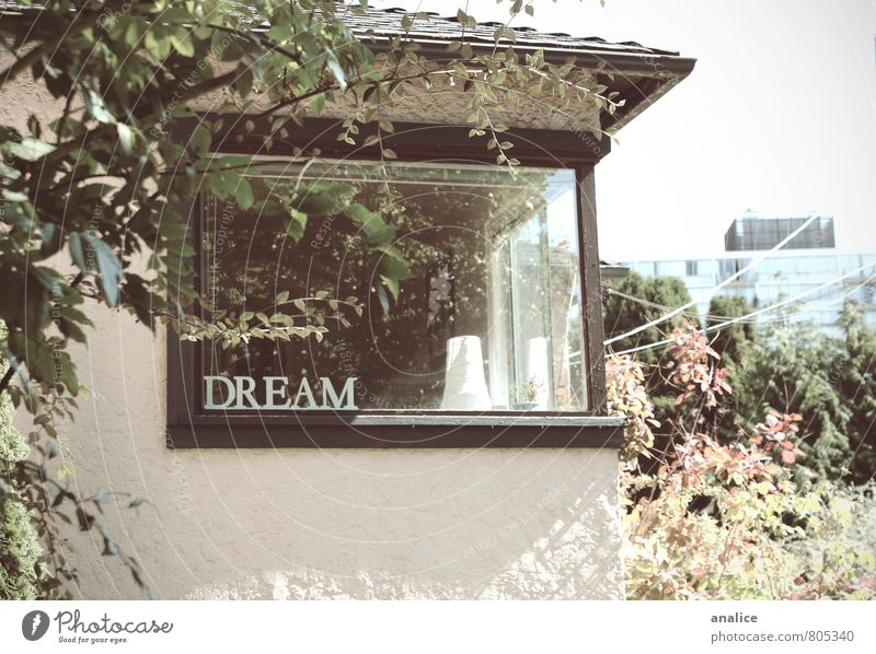 dream Beautiful Calm House (Residential Structure) Window Architecture Love Emotions Bright Dream Living or residing Free Glass Simple Retro Uniqueness Cute