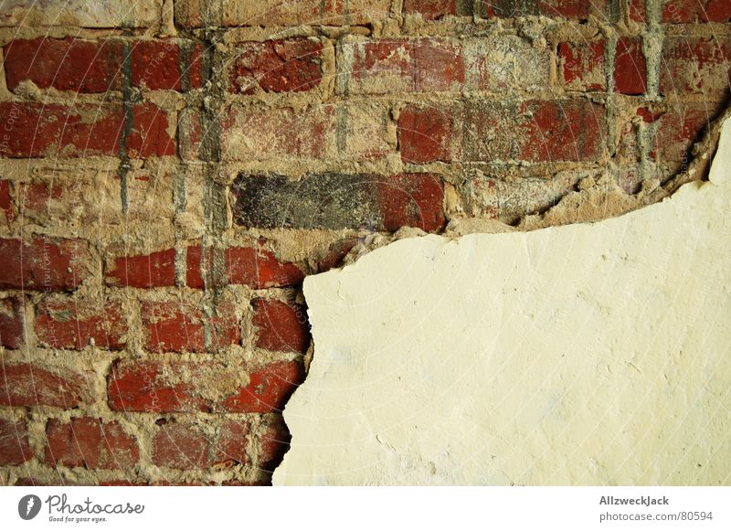mania for cleaning Brick red Wall (building) Wall (barrier) Plaster Decline Derelict Harmful Partition wall Putrefy Bursting Crack & Rip & Tear Decompose