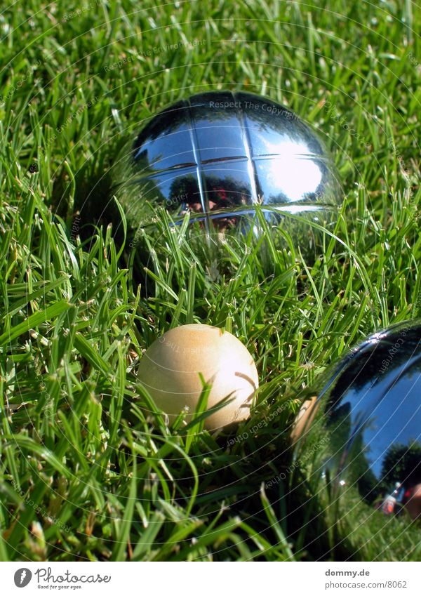 Green Playing Wood Grass Leisure and hobbies Round Sphere Iron Boules
