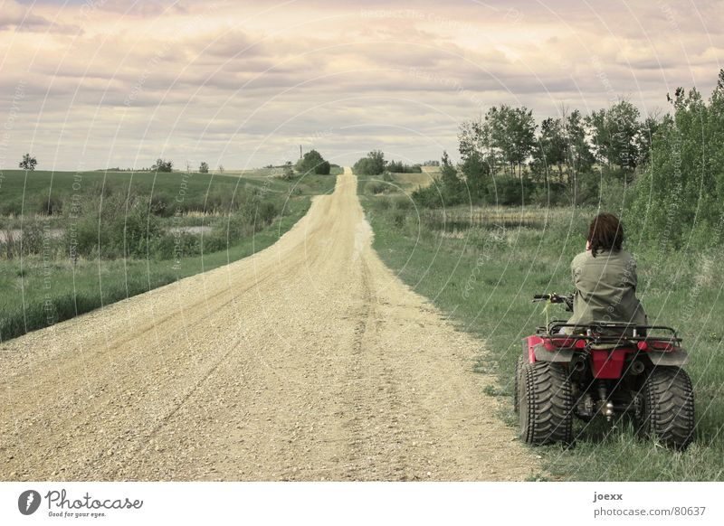 Away with the quad bike Buggy (Motorbike) Resume Clouds Bad weather Silhouette Exhaust Break Think Woman Green Beige Tree Bushes Territory Far-off places Flee