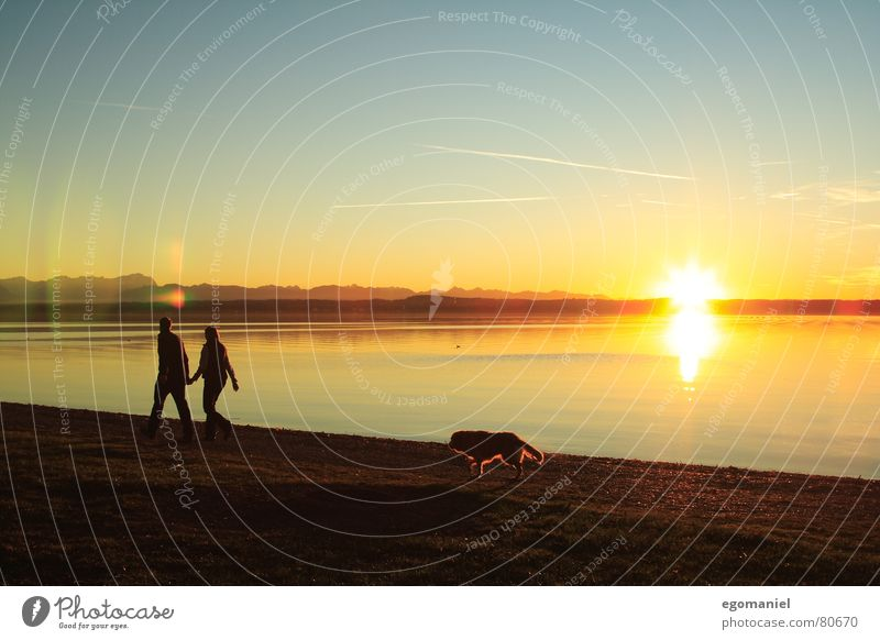Human being Nature Water Sky Sun Clouds Far-off places Mountain Dog Family & Relations Lake Coast Horizon To go for a walk Lake Starnberg