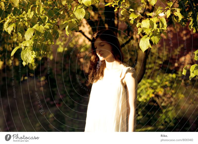 Get out of here. Human being Feminine Young woman Youth (Young adults) 1 18 - 30 years Adults Nature Summer Tree Leaf Garden Park Brunette Long-haired Dream