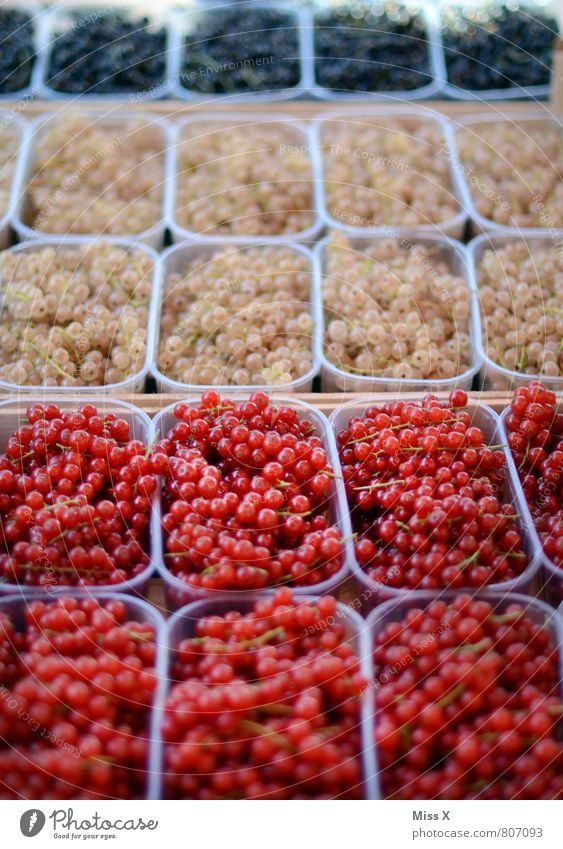 Red gold black... Food Fruit Nutrition Organic produce Vegetarian diet Diet Healthy Eating Fresh Delicious Sour Sweet Multicoloured Redcurrant Berries