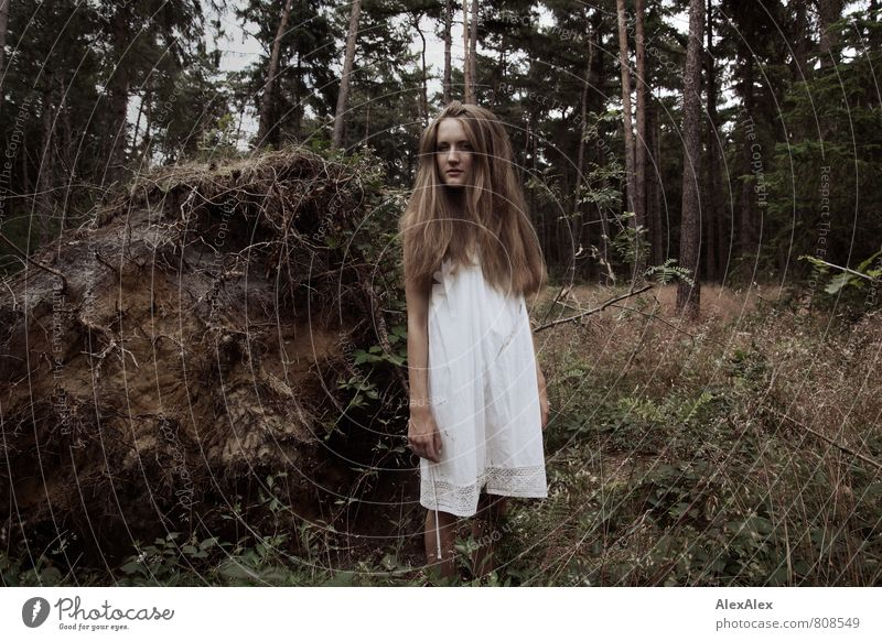 the forester's beautiful daughter Adventure Young woman Youth (Young adults) 18 - 30 years Adults Nature Landscape Tree Grass Bushes Root of a tree Forest