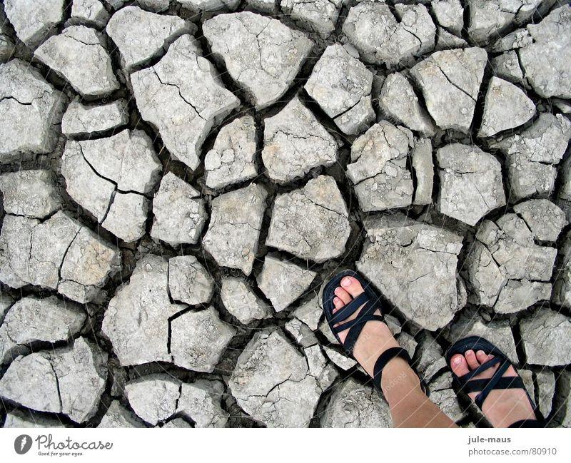 Beach Feet Footwear Coast Earth Floor covering Dry North Sea Crack & Rip & Tear Column Drought Dried Sandal Salt meadow