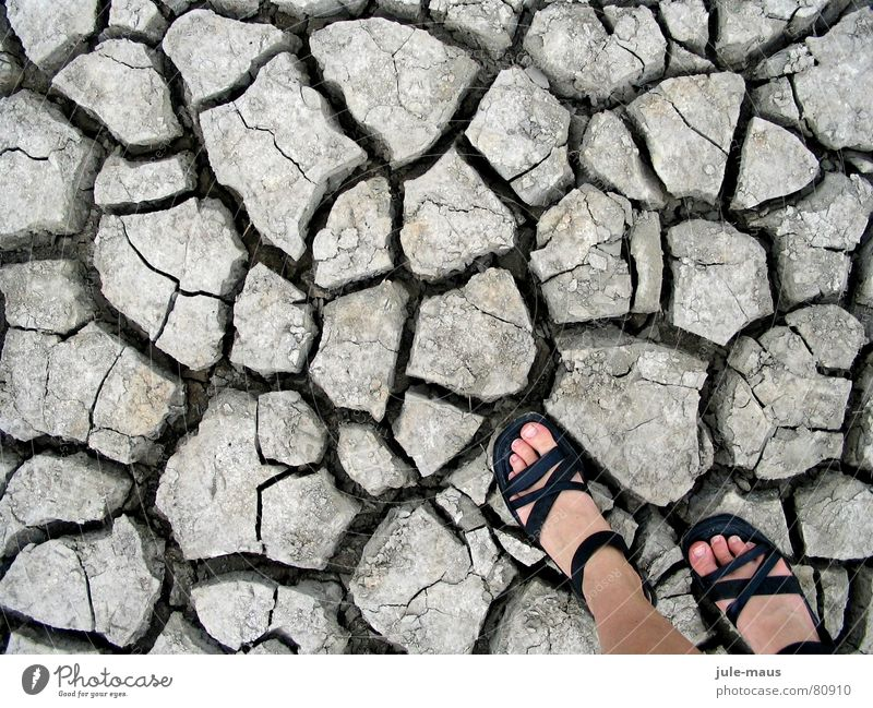 walking on (too much) sunshine Sandal Footwear Dry Drought Beach Coast Feet Earth Salt meadow Floor covering Dried Crack & Rip & Tear North Sea Column soil