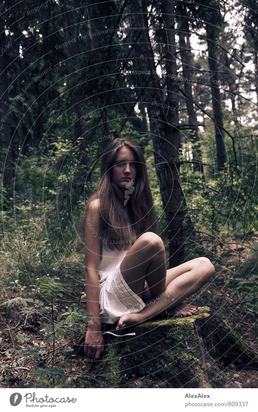 Young slender woman with long brunette hair in white dress sits cross-legged on a tree stump in a forest Adventure Young woman Youth (Young adults) Legs