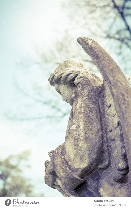 Angel from behind Sculpture Spring Park Esthetic Authentic Dirty Firm Retro Gloomy Moody Sadness Senior citizen Loneliness Mysterious Belief Religion and faith