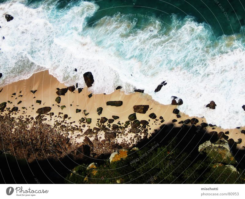 Water Ocean Beach Above Stone Bird Waves Coast Rock Africa Under Foam White crest South Africa Ledge Cape of Good Hope