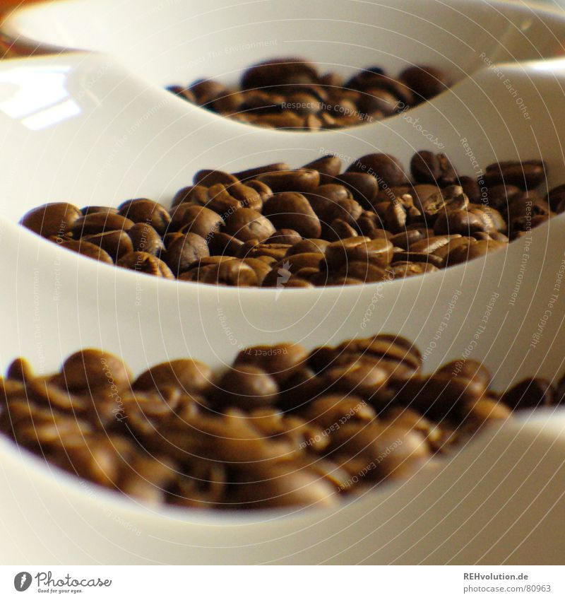 Warmth Brown Coffee Physics Café Delicious Bowl Alert Beans Coffee bean Caffeine