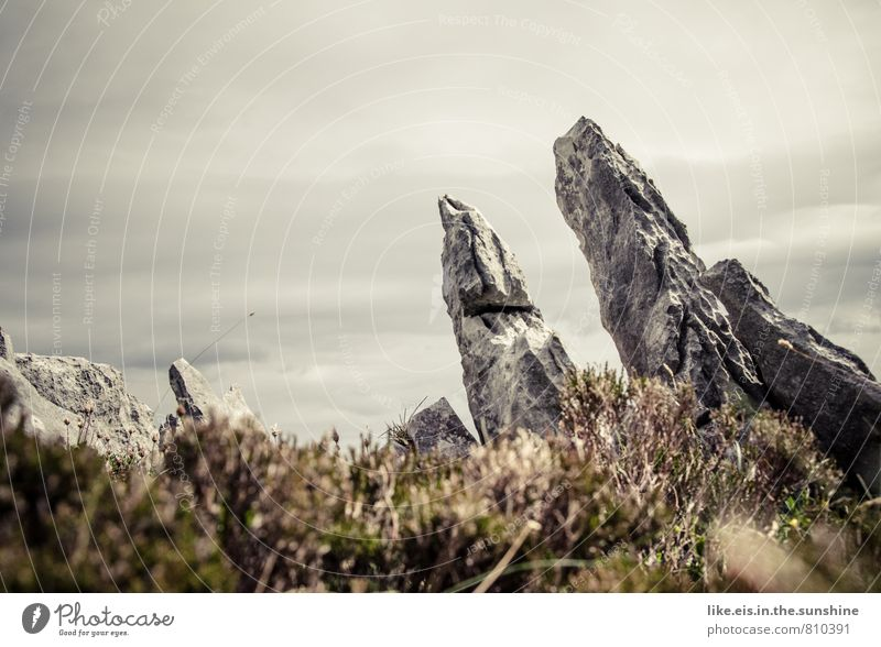 Sky Nature Plant Landscape Environment Mountain Gray Stone Rock Earth Bushes Point Elements Moss Ireland Sparse