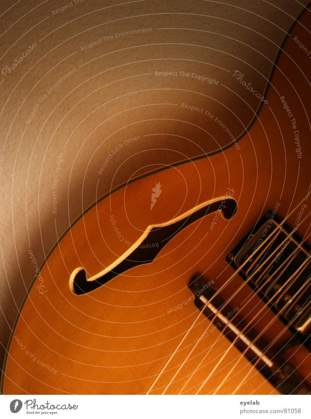 Wood Music Work and employment Countries Concert Rock music Footbridge Guitar Musical instrument Song Entertainment Musical instrument string Wood grain Jazz
