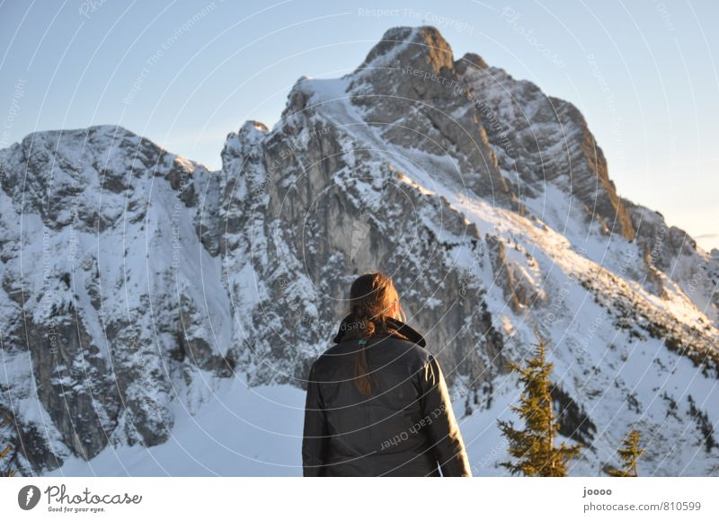 respectfulness Trip Winter Snow Winter vacation Mountain Hiking Feminine Young woman Youth (Young adults) 1 Human being Landscape Rock Alps Peak Snowcapped peak