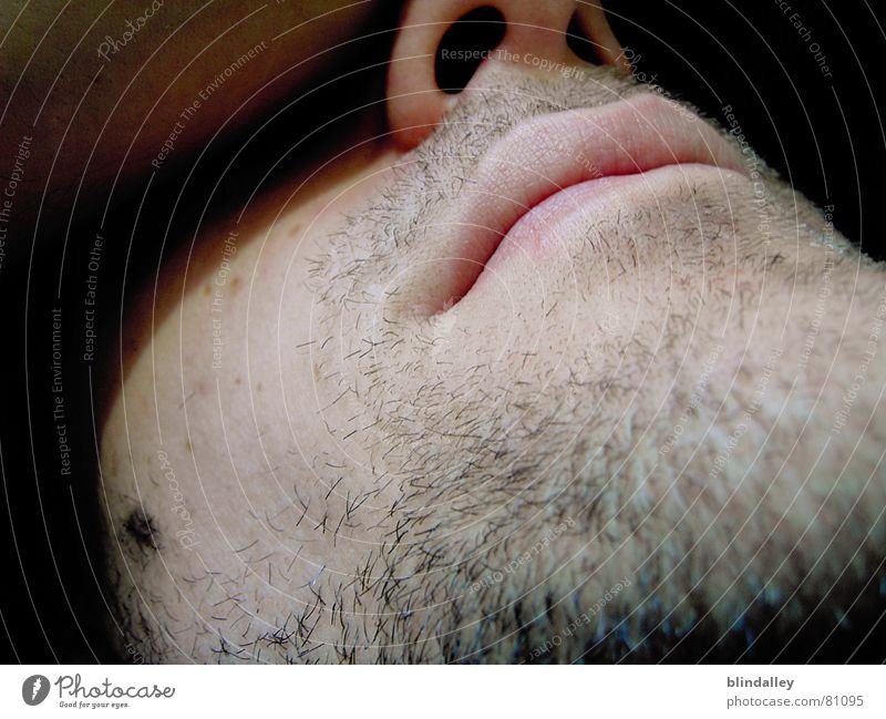chillout Digital camera Facial hair Sleep Calm Man Interior shot Macro (Extreme close-up) Close-up Face Mouth Lie Perspective Shadow Skin Nose