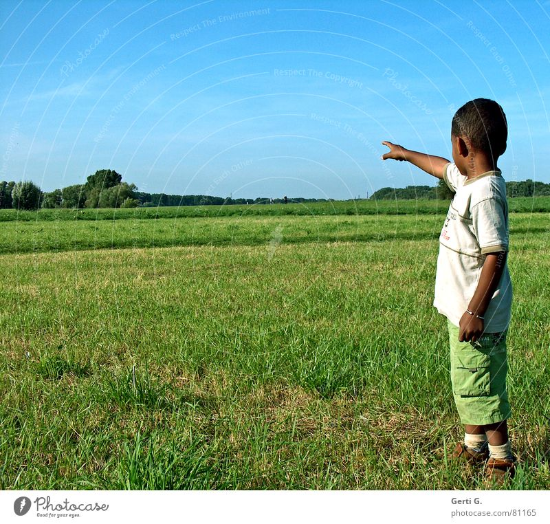 Human being Child Blue Green Tree Far-off places Meadow Landscape Boy (child) Grass Lanes & trails Arm Perspective Lawn Concentrate Pants