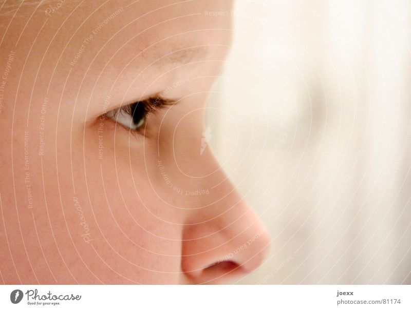 Human being Child White Black Face Eyes Boy (child) Head Think Bright Brown Infancy Nose Authentic Point Concentrate