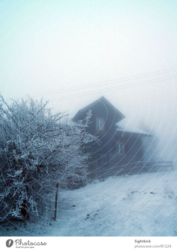 Winter House (Residential Structure) Clouds Cold Snow Window Building Ice Flat (apartment) Fog Bushes Roof Switzerland Fence Hedge Vail
