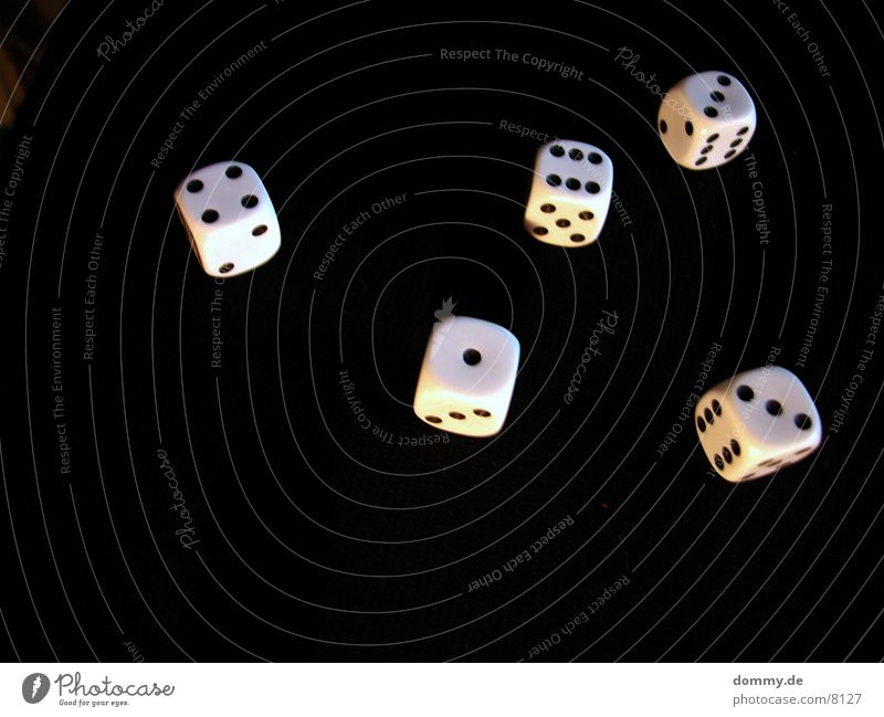 Black Dice Digits and numbers
