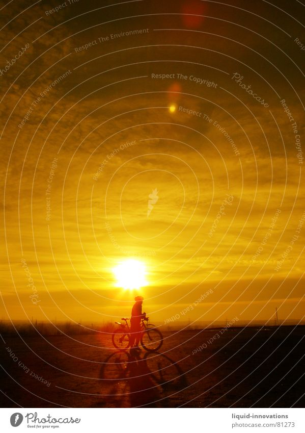 Sunny Biker Cycling Sunset Bicycle Clouds Horizon Sky Celestial bodies and the universe Dusk