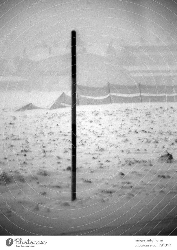 blizzard Gale Fence Winter Hissing Field Snow Landscape Black & white photo