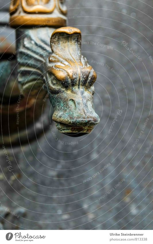 grrrr Stone Metal Observe Looking Aggression Threat Aggravation Grouchy Art Tap Dragon Ferocious Evil Water spout Brass Patina Verdigris Arts and crafts