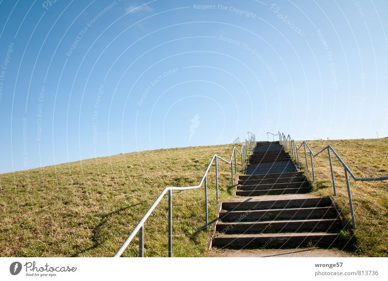 celestial staircase Summer Hill Garbage dump Tall Blue Brown recultivation Renewal Stairs Handrail Horizon Sky Skyward Blue sky grass mound Go up Colour photo