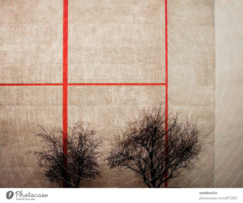 Tree Red House (Residential Structure) Warmth Gray 2 In pairs Corner Bushes Transience Physics Farm Tree trunk Parallel Backyard Beige