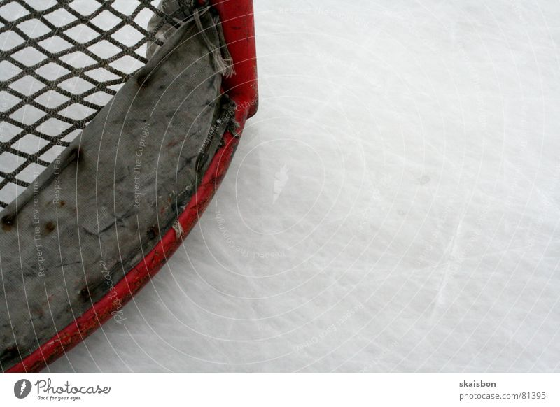 flat in the corner Leisure and hobbies Playing Sports Ice Frost Gate Net Fresh Cold National Hockey League Ice hockey Frozen surface Invitation Credit