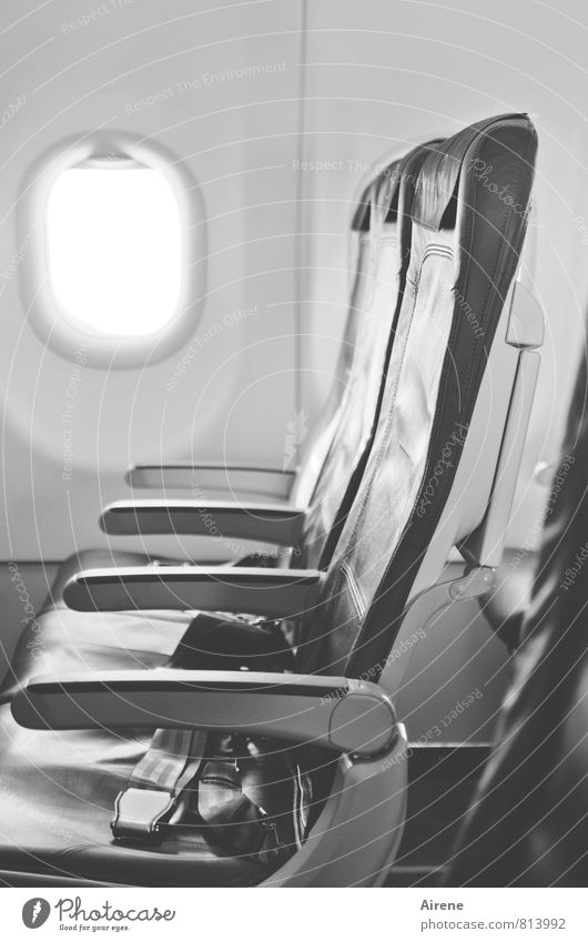 last minute Vacation & Travel Tourism Transport Means of transport Aviation Airplane Passenger plane In the plane Flying Wait Free Cold Gray Black White