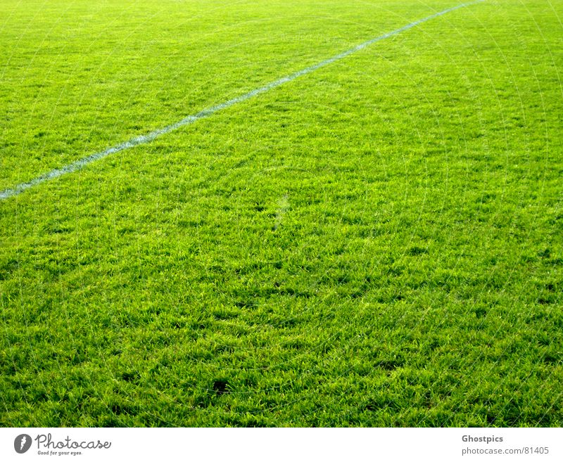 It doesn't get greener ;) Sports Green Line Field Multicoloured Playing Ball sports Colour grass. green athletic Soccer