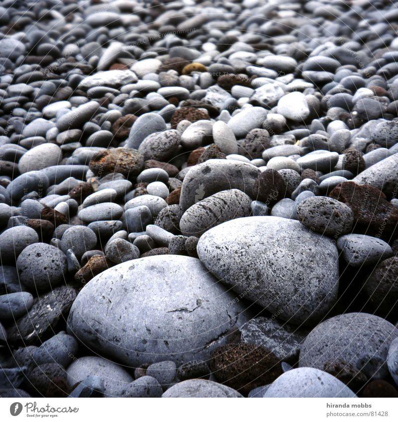 Ocean Beach Calm Gray Stone Coast Circle Multiple Round Serene Many Lakeside Bathing place Neutral color
