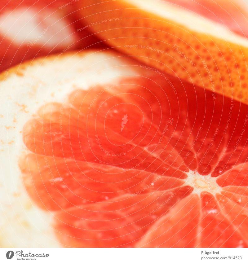 grapefruit Fruit Sour Grapefruit Summer Juicy Orange Fruit flesh Healthy Nutrition Sheath Delicious Colour photo Shallow depth of field