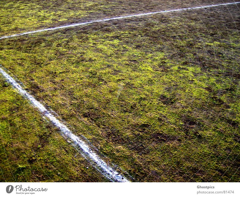 Stroke?! Moss?! What's going on?! Corner Green Line Field Multicoloured Mud Sports Playing Autumn Ball sports 90° Dirty grass. green athletic Soccer