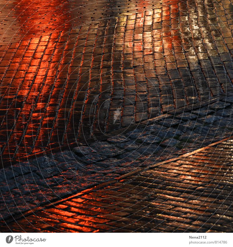 333 Paving stones for Photocase Village Small Town Downtown Old town Pedestrian precinct Marketplace Train station Street Lanes & trails Dark Wet Rainwater