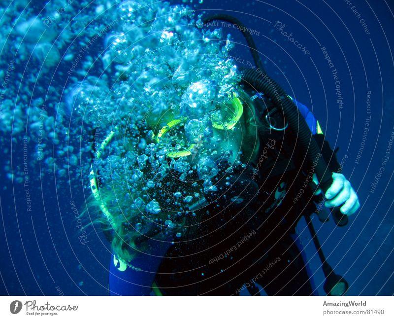 Water Ocean Blue Joy Freedom Air Dive Infinity Deep Breathe Air bubble Underwater photo Aquatics Diver Egypt Oxygen
