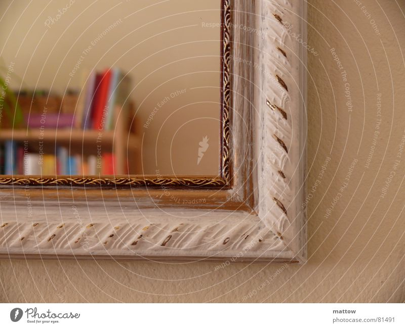 Picture in picture Bookshelf Picture frame Mirror Mirror image Shelves Household Image Frame edge Self portrait hem