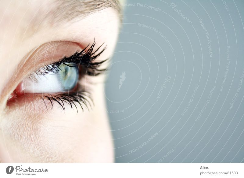Woman Beautiful Blue Face Eyes Grief Vantage point Eyelash Eyebrow Lens Vista Snapshot Human being Contact lense Eye colour