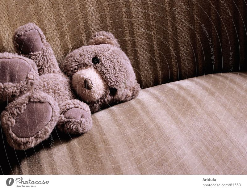 Old Loneliness Sadness Lie Individual Soft Cloth Toys Pelt Needy Cuddly Seeking help Cuddly toy Beige Forget Armchair