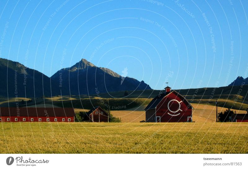 Idyllic Oregon II Hill Meadow Grass Green Red Barn USA Americas Wallowa Mountains Yellow Sky Calm Blue red barn hills eastern oregon mountains quiet