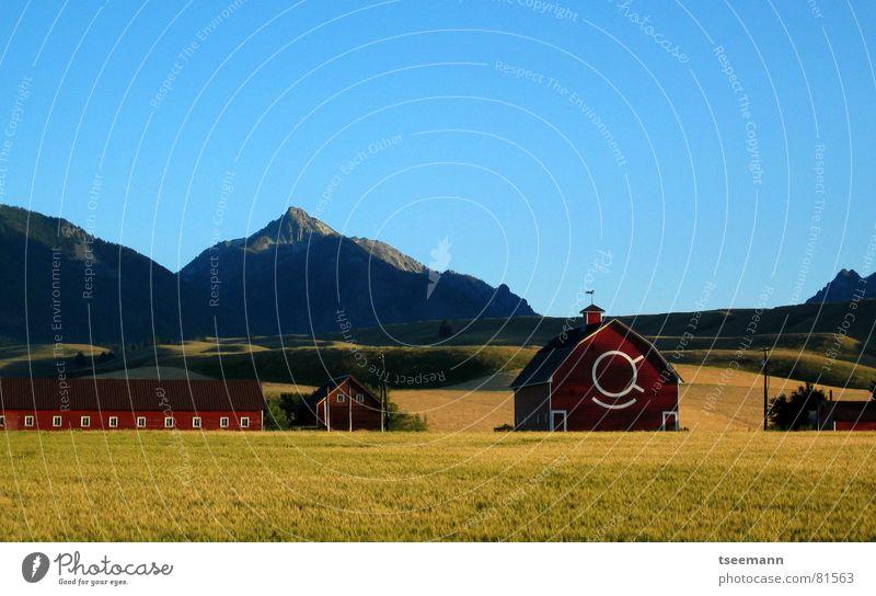 Sky Green Blue Red Calm Yellow Meadow Grass Mountain USA Idyll Hill Americas Barn Oregon Wallowa Mountains