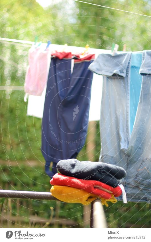 Summer Emotions Happy Garden Germany Success Fresh Clothing Wet Clean Cloth German Flag Flag Pants Jeans Washing