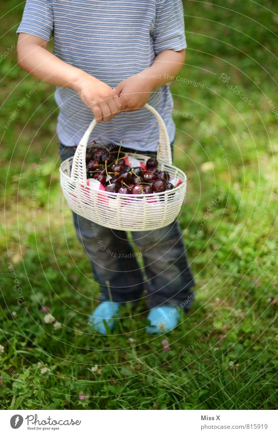 Human being Child Summer Red Healthy Eating Emotions Meadow Feminine Garden Moody Food Leisure and hobbies Masculine Fruit Fresh