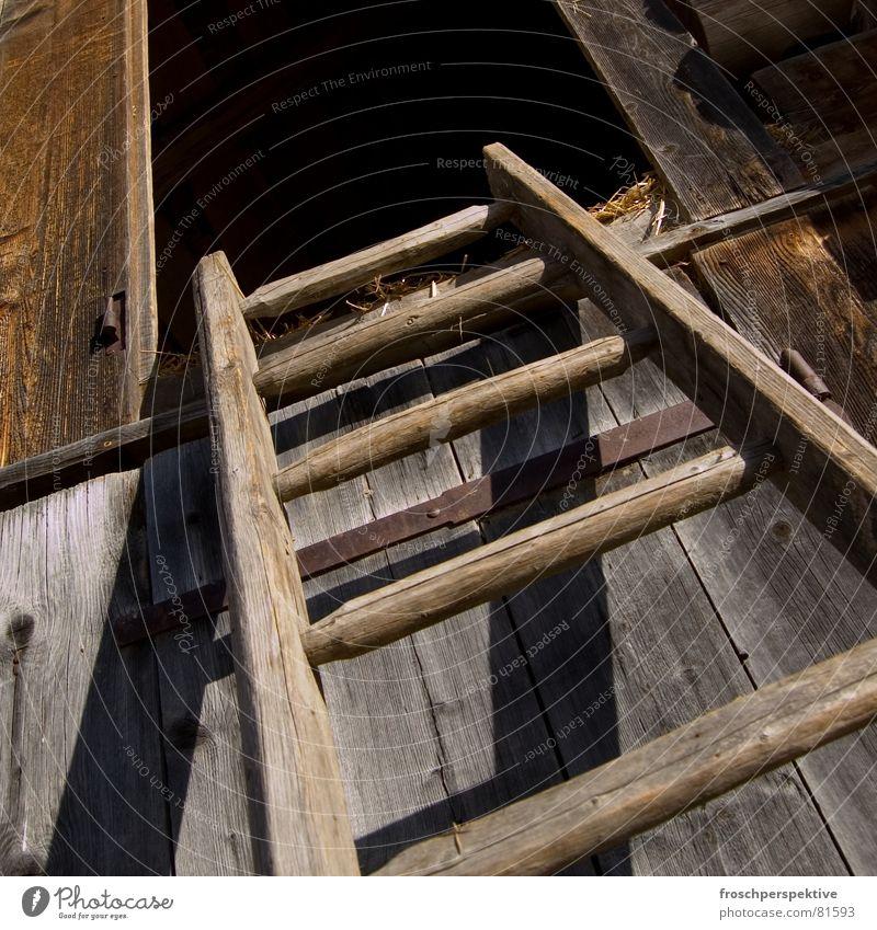 Old Wood Stairs Switzerland Farm Derelict Americas Upward Ladder Alpine pasture Hatch Barn Rung Country life Oberland Hayrick