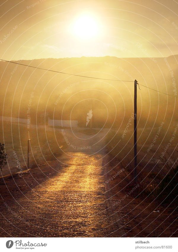 Sun Loneliness Street Warmth Landscape Brown Orange Fog Weather Physics Electricity pylon Dusk Beige Portugal Remote Bad weather